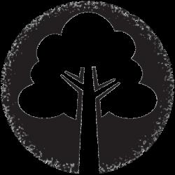 wilderness-wood